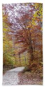 Pachaug State Forest Beach Towel