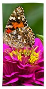 Painted Lady With Zinnia Beach Towel