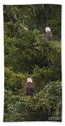 Pair Of Bald Eagles Beach Towel