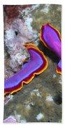 Pair Of Pink Flatworms, Kalimantan Beach Towel