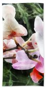 Pale Pink Phalaenopsis Orchids Beach Towel