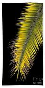 Palm Frond Against Black Beach Towel