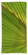 Palm Leaf II Beach Towel