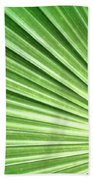 Palm Leaf Beach Towel