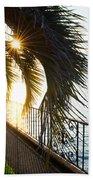 Palm Tree In Backlight Beach Towel