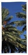 Palms 9838b Beach Towel
