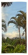 Palms In Costa Rica Beach Towel
