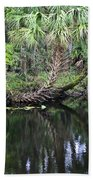 Palms On The River Beach Towel