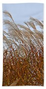 Pampas Grass In The Wind 1 Beach Towel