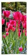 Panel Of Pink Tulips Beach Towel