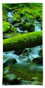 Paradise Of Mossy Logs And Slow Water   Beach Towel