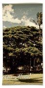 Parkside Postcard Beach Towel