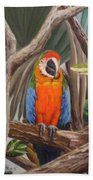 Parrot At New Orleans Zoo Beach Towel