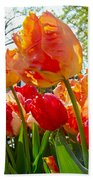 Parrot Tulips In Philadelphia Beach Towel by Mother Nature