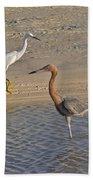 Passing Egrets Beach Towel