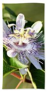 Passion Flower - May Pop Bloom Beach Towel