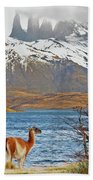 Patagonia Beach Towel