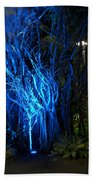 Path Of The Living Trees Beach Towel