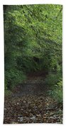 Path Through The Woods Inistioge Beach Towel