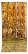 Patriotic Autumn Beach Towel