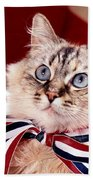 Patriotic Puddy Cat Beach Towel