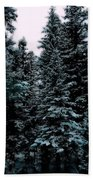 Pat's Winter Trees 1d Beach Towel