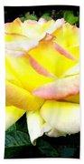 Peace Rose- Okanagan Valley Beach Towel