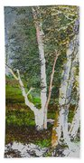 Peaceful Meadow Beach Towel