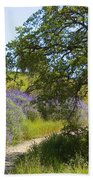 Peaceful Path Beach Towel