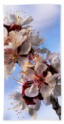Peach Blossoms Beach Towel