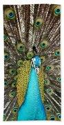 Peacock Plumage Feathers Beach Towel