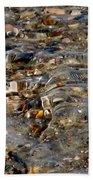 Pebbles And Shells By The Sea Shore Beach Towel