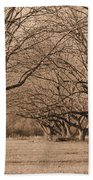Pecan Orchard Beach Towel