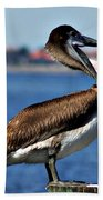 Pelican II Beach Towel