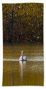 Pelican On Golden Pond Beach Towel
