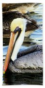Pelican Pete Beach Towel by Karen Wiles