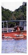 Pelicans Following Boat Beach Towel