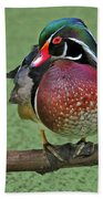 Perched Wood Duck Beach Towel