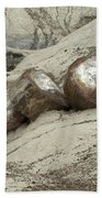 Petrified Forest 1 Beach Towel