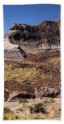 Petrified Forest Badlands Beach Towel