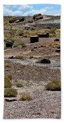 Petrified Forest National Park 2 Beach Towel