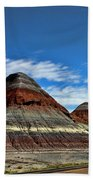 Petrified Forest National Park Beach Towel
