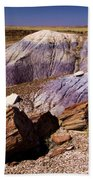 Petrified Logs In The Badlands Beach Towel