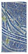 Phytoplankton, Lm Beach Towel