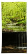 Pickle Spring In Missouri Beach Towel