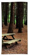 Picnic Table Beach Towel by Carlos Caetano