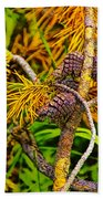 Pine Cones And Needles On A Branch Beach Towel