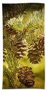 Pine Cones No.056 Beach Towel