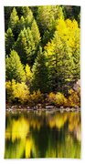 Pine Reflection At Georgetown Lake Colorado Beach Towel