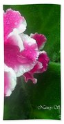 Pink African Violets And Leaves Beach Towel